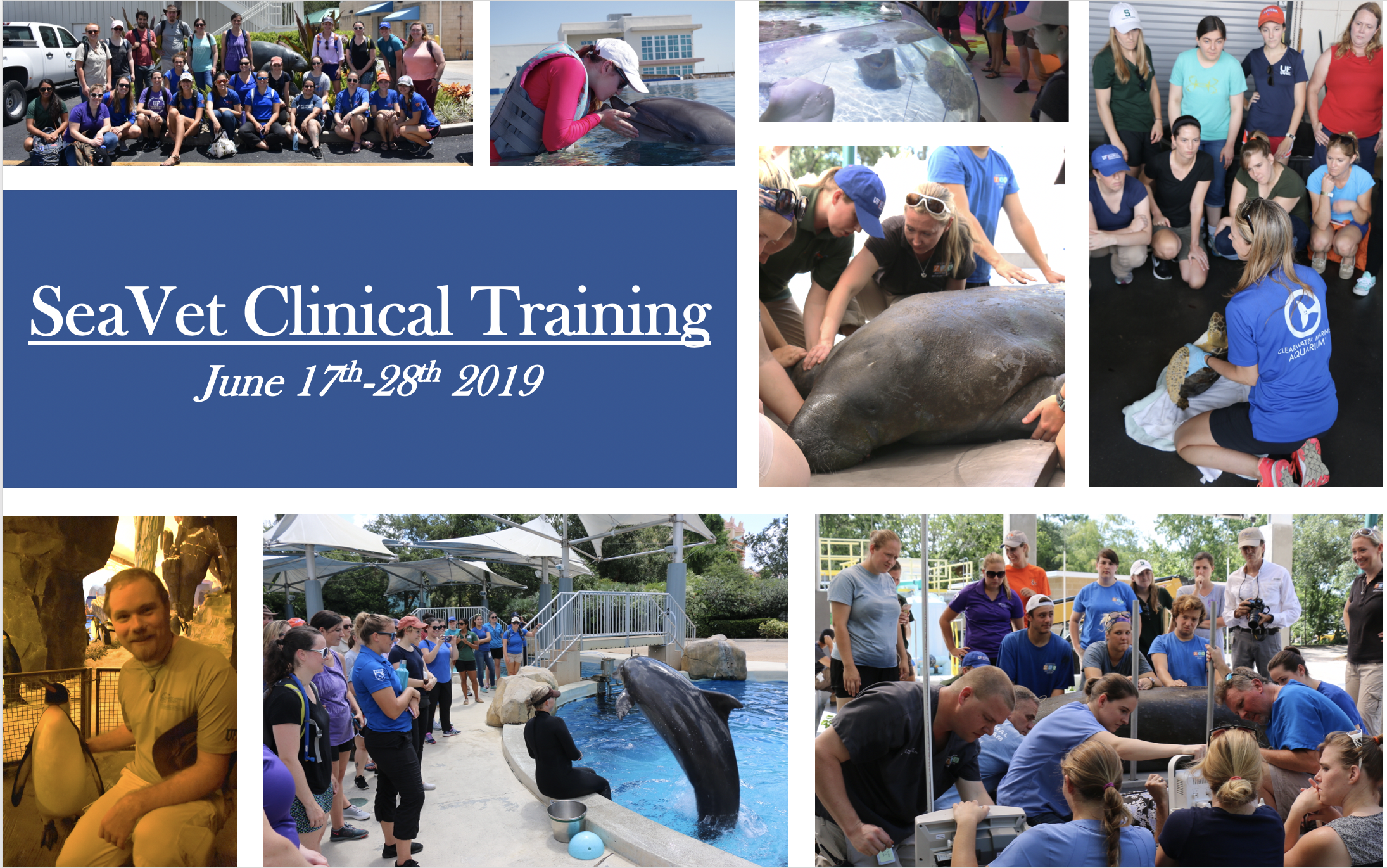These photos were taken from last years SeaVet course 2018 to depict the various facility field trips offered during the course.