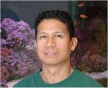 dr. roy yanong