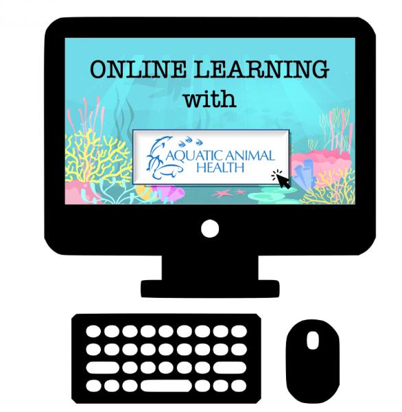 online learning jpg